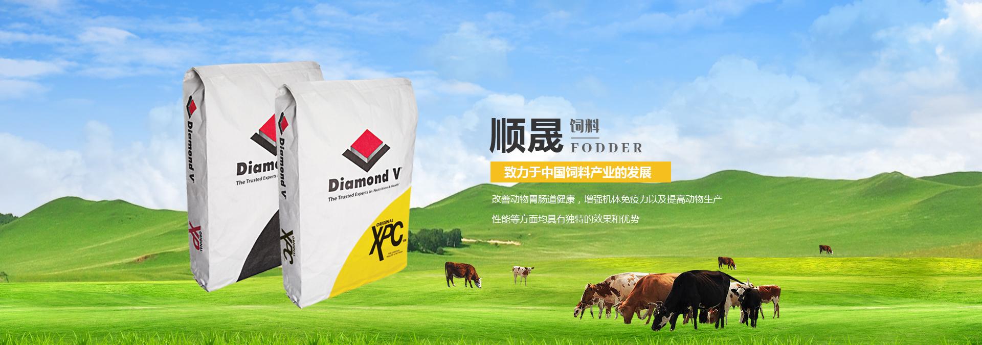 肉牛饲料添加剂